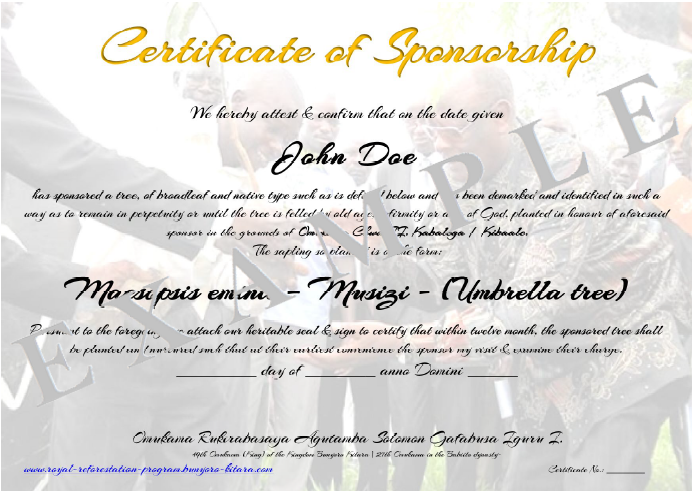 Certificate of appreciation for sponsorship template etamemibawa sponsor certificate of appreciation template pictures yadclub Gallery